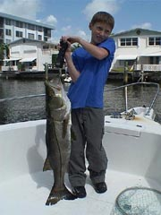 Florida Snook picture